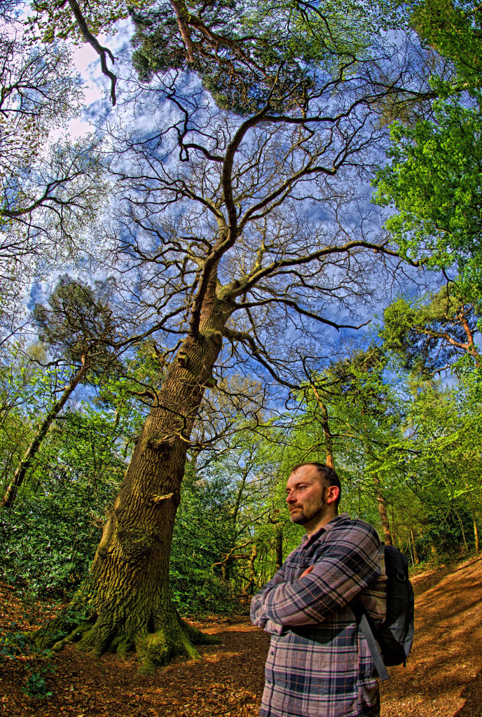 2013.05.04 - Lion Wood Norwich - HDR-08