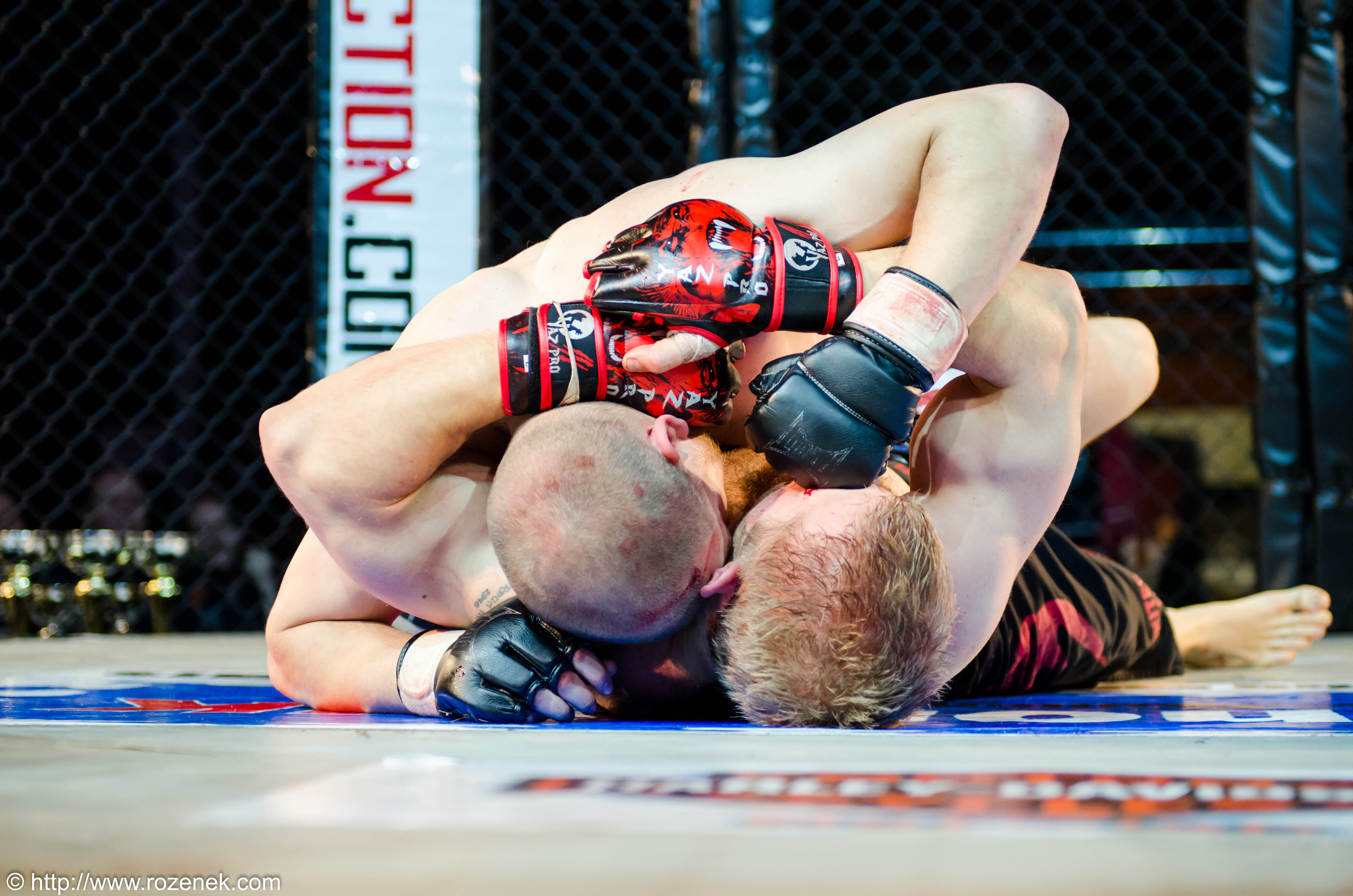 mma cage fighting or street fighting Underground cage fighting championship made its mark on july 21, 2018 at the palm beach county convention center in palm beach county for the first time in history, palm beach had its first professional mma event.
