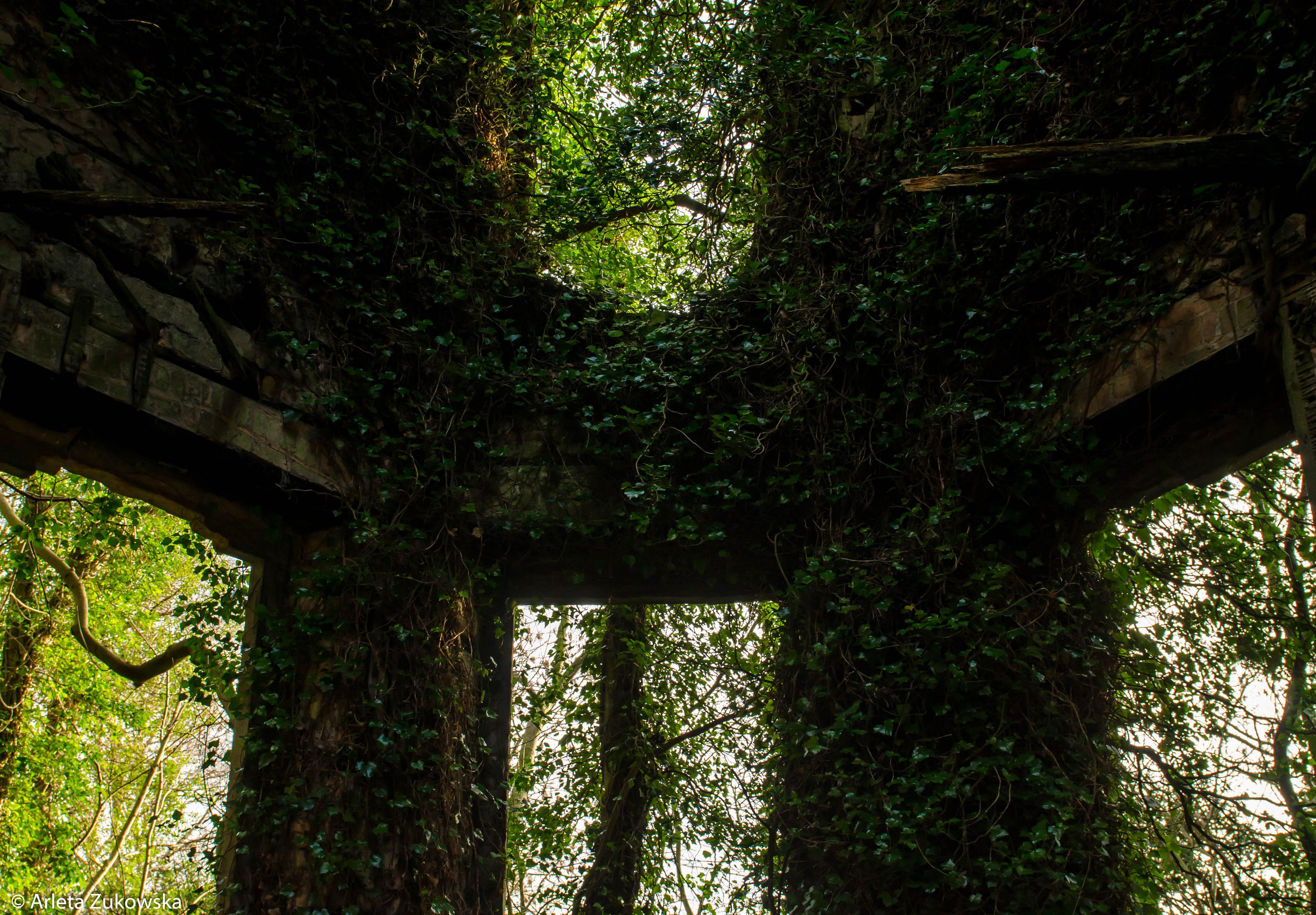 2014.01.18 - Riseholme Abandoned House II - 08