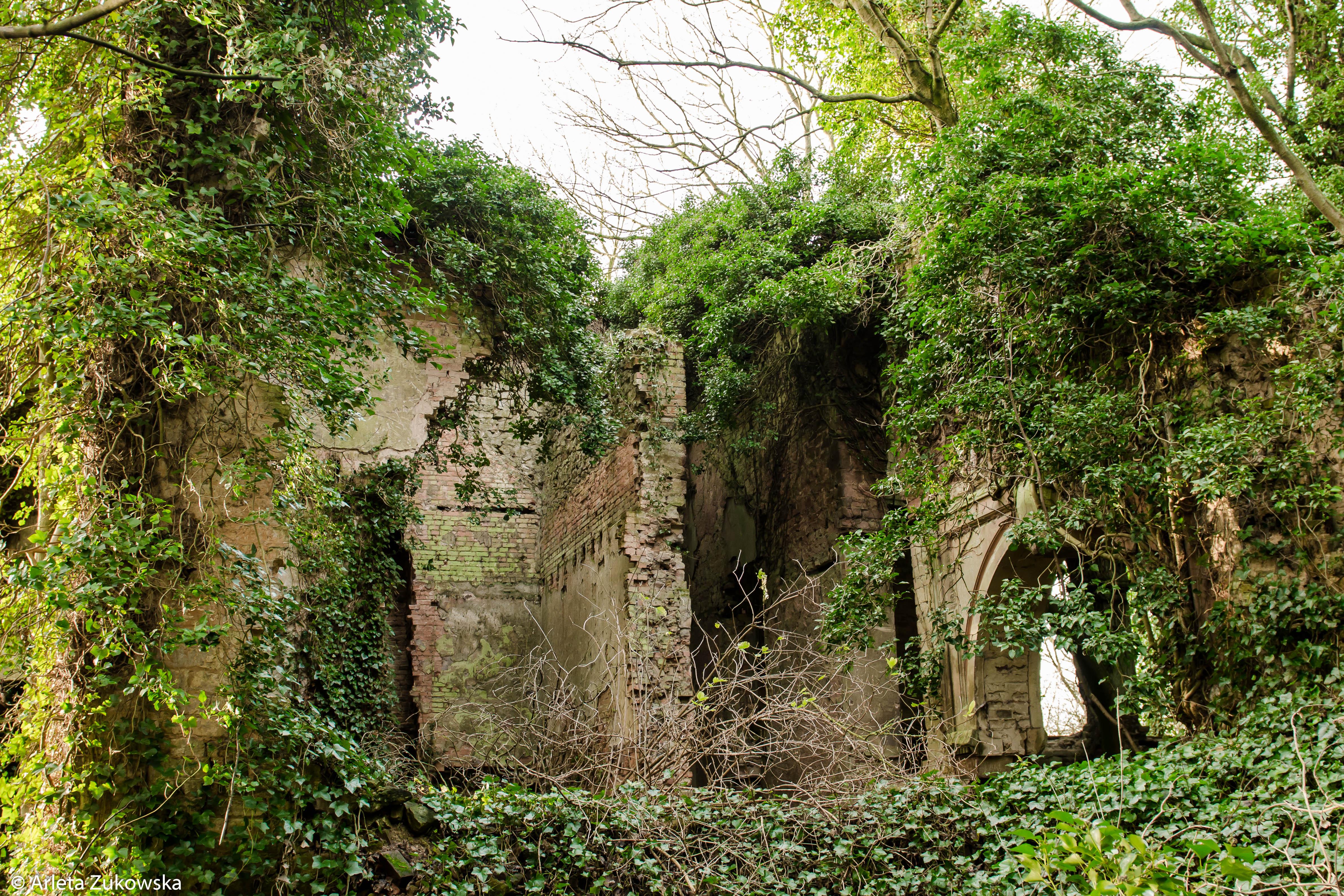 2014.01.18 - Riseholme Abandoned House II - 09