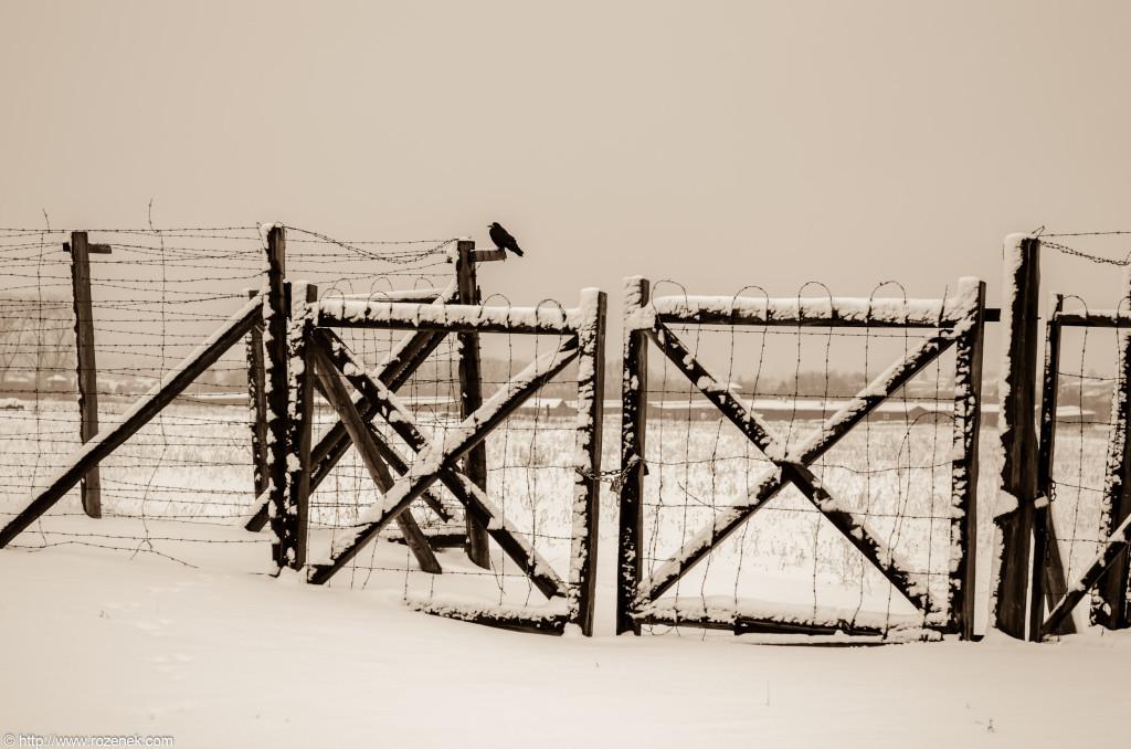 2012.12.16 - Majdanek - 07