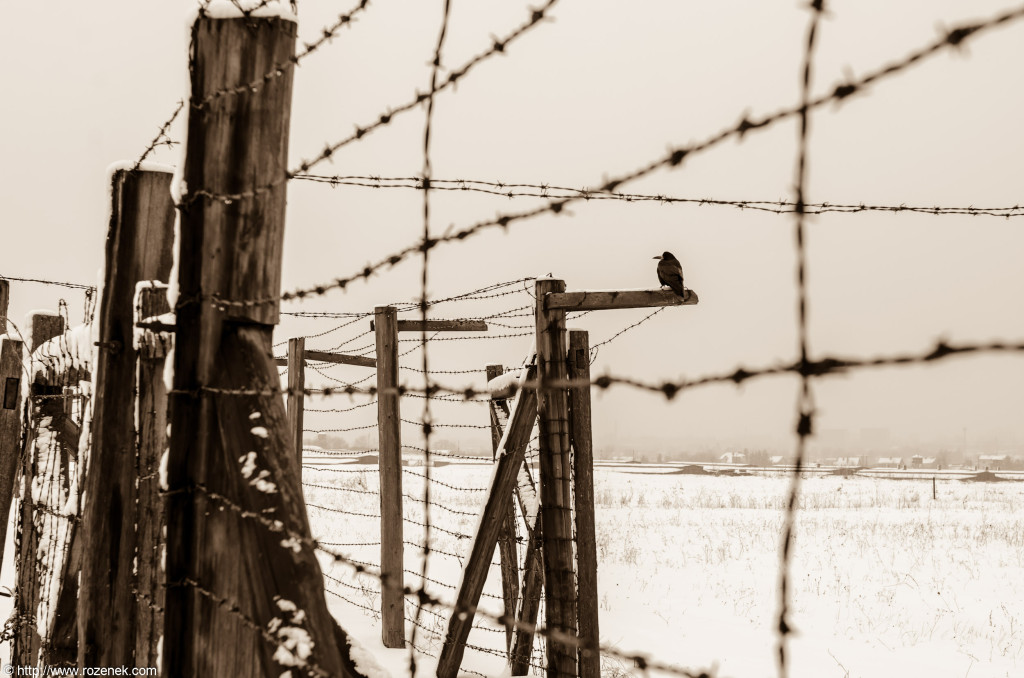 2012.12.16 - Majdanek - 10