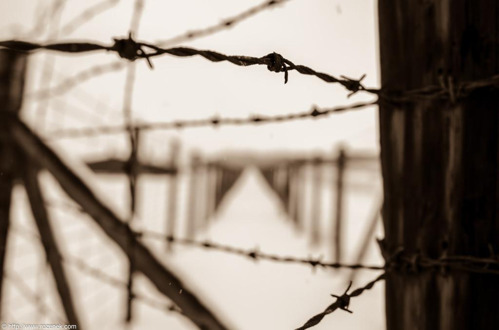 2012.12.16 - Majdanek - 18