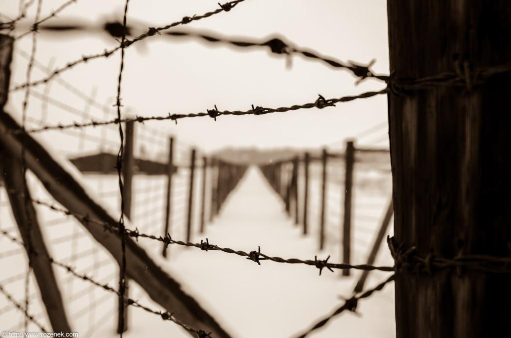 2012.12.16 - Majdanek - 19