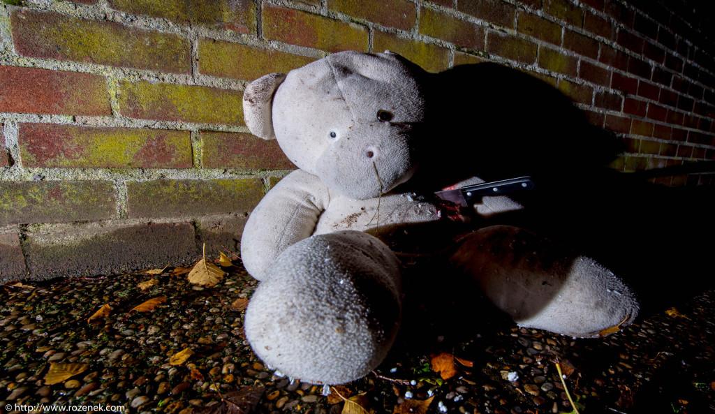 2013.11.23 - Teddy - 10
