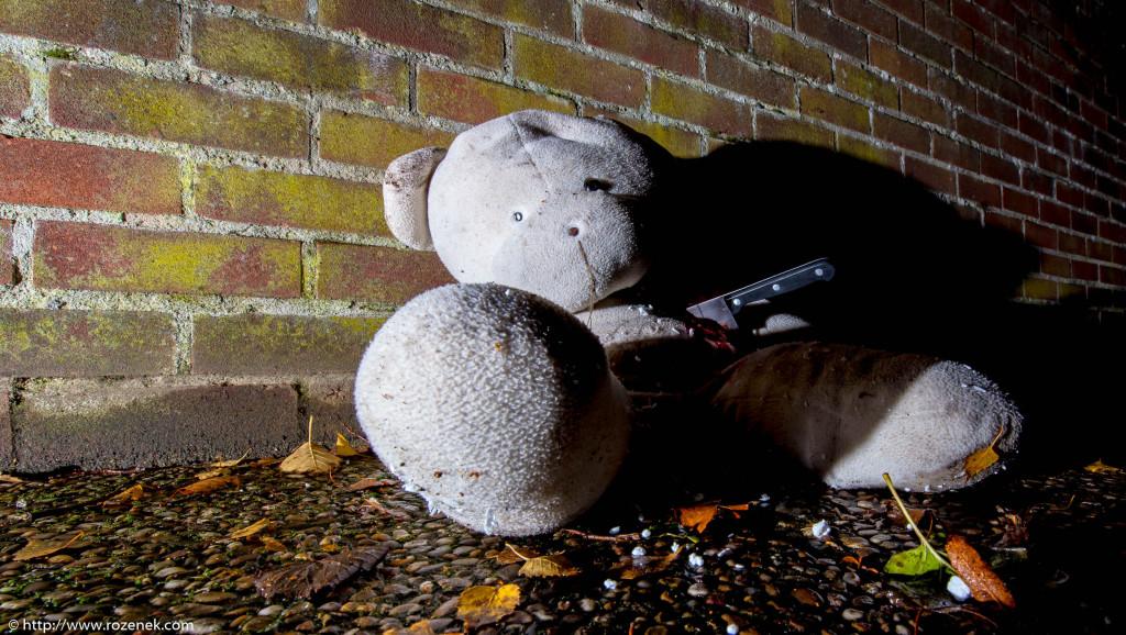 2013.11.23 - Teddy - 12