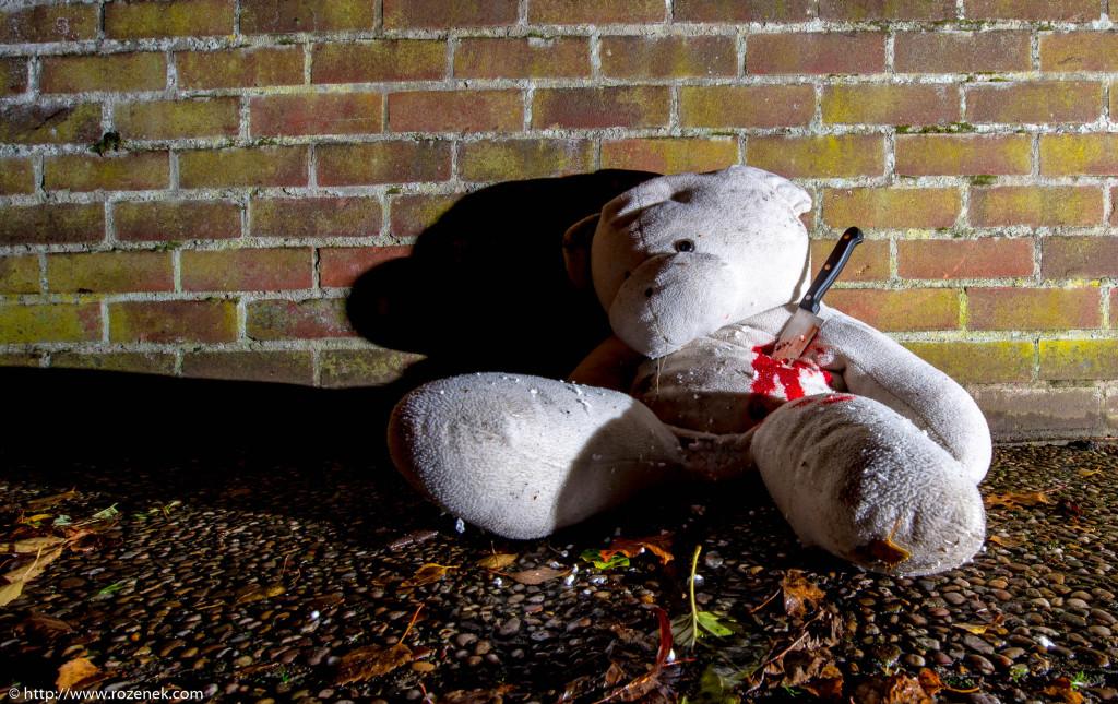 2013.11.23 - Teddy - 14