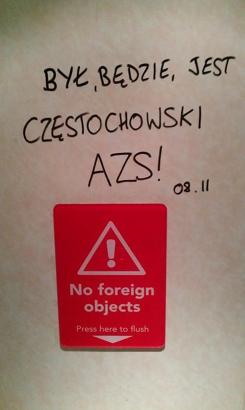 polskie-bydlo-w-anglii