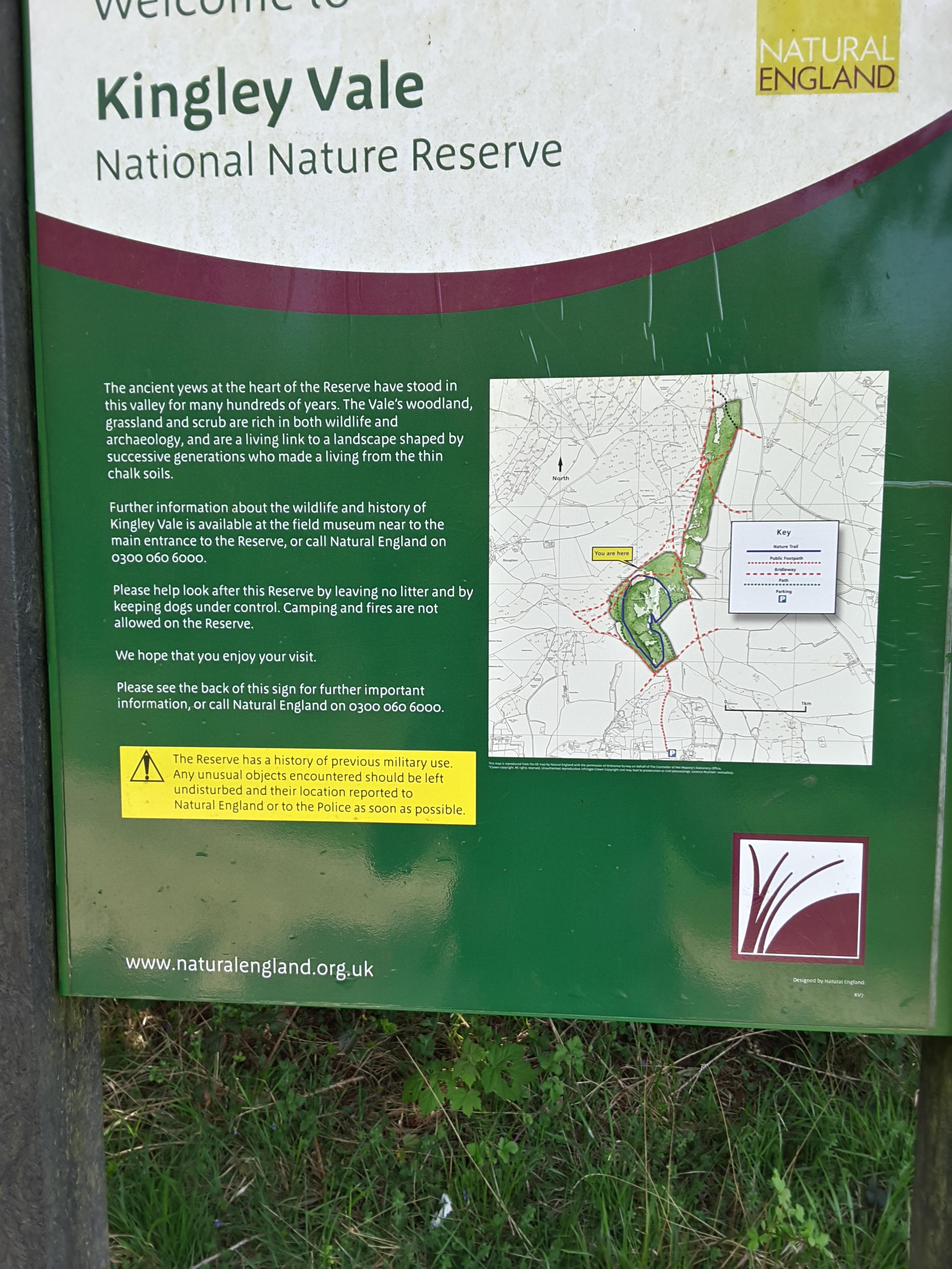 2016.05.08 - Kingley Vale National Nature Reserve - 07